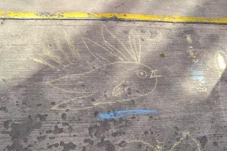 Dibujo del niño